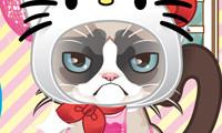 grumpy-kitty